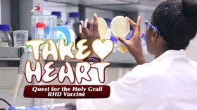 Quest for the Holy Grail RHD Vaccine